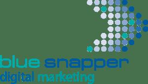 Digital Marketing Oxford UK - Blue Snapper